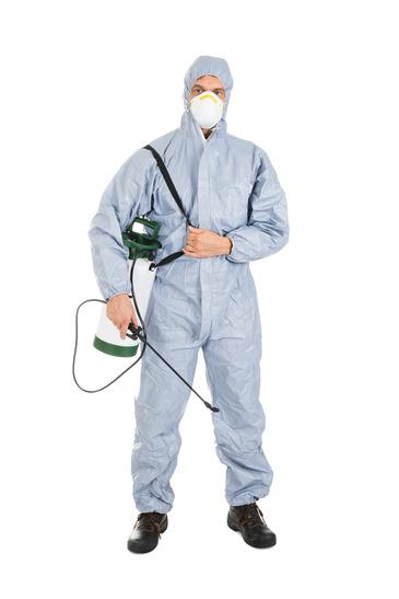 Pest Control Worker With Pesticides Sprayer